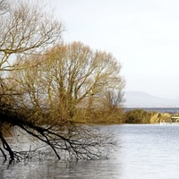 Investment of more than £1 million for shores of Lough Neagh
