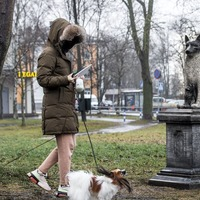 Estonians erect statue and give home to beloved stray dog