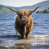 In Pictures: The best images from Scotland in 2020