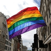 LGBT activists protest as Hungarian law comes into force