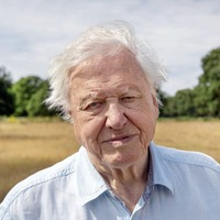 Sir David Attenborough on why there's still time to save our Perfect Planet – if we act now