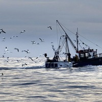 North-South tension over fish stocks in 1997