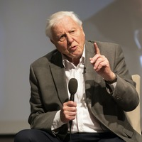 David Attenborough says 2021 could be year for 'positive change'
