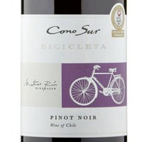 Wine: This highlights the quality and fruit-driven value of Chilean Pinot Noir