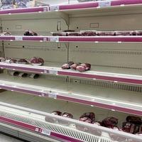 Supermarkets face fresh shortages 'unless EU extends grace period'