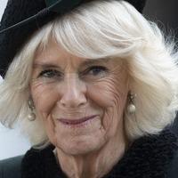 Camilla picks final instalment of Mantel's Wolf Hall trilogy for book club