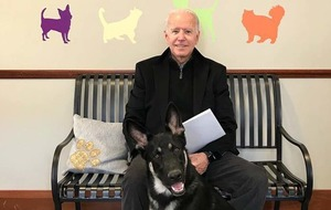 Joe Biden's dog Major honoured at 'indoguration' featuring Josh Groban