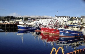 Three Donegal ports among five to accept fish from NI-registered boats