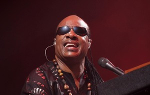 Stevie Wonder leads celebrities marking Martin Luther King Jr Day