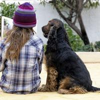 Five ways animals can help children learn better