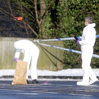 Lurgan crime gang behind pipe bomb alert
