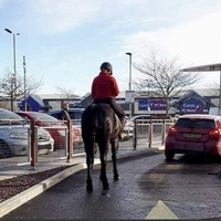 Newry teen orders food at McDonald's drive-thru on her horse