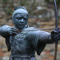 Robin Hood society attracts surge in followers after trading platform confusion