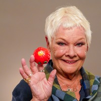 Judi Dench, Lenny Henry and Benedict Cumberbatch help launch Red Nose Day 2021