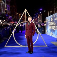 Fantastic Beasts 3 filming halted due to positive coronavirus result