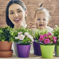 Gardening: How to get your child interested in houseplants – whatever their age