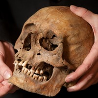 Genetic and fossil records will not reveal single point for modern human origins