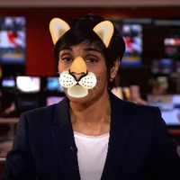 Newsreader dons cat filter on air after lawyer's viral Zoom mishap