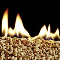 Ministers plan to shut RHI scheme and compensate boiler owners