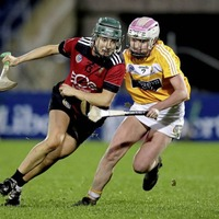 Ulster camogs lead race for All-Star Player of the Year awards