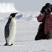 Travel: Your essential guide to how to make the most of post-pandemic polar pursuits