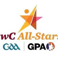 Limerick follow Dublin's lead to land nine Allstars plus Player of the Year