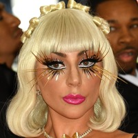 Lady Gaga's dogs found safe and well after being stolen at gunpoint