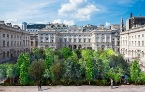 Somerset House to unveil forest to draw attention to climate change