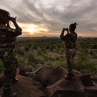 Smartphones used to create 'virtual rangers' to deter poachers