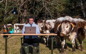 Rural community sets up office in field due to poor internet