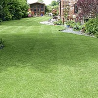 The Casual Gardener: Dismount, men – the lawn's days are numbered