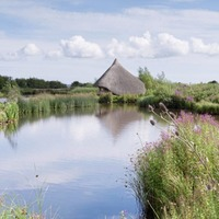 Co Down wetland reserve Castle Espie awarded £200,000 funding to help recover from Covid-19 pandemic