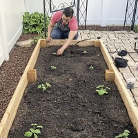Gardening advice: How to build a raised bed