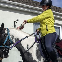 Rescue pony finds new job delivering novels to socially distanced book club