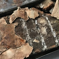 Chocolate given by Queen Victoria to troops in 1900 found in Oxburgh Hall attic