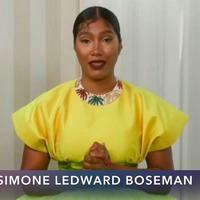 Chadwick Boseman's final performance honoured at the SAG Awards