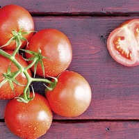 Gardening: How to grow new vegetables from kitchen scraps