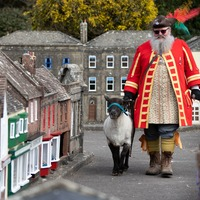 Town crier drives sheep through model village in nod to honorary privilege