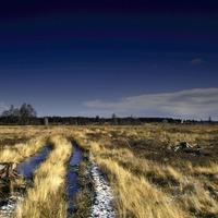 Culloden battlefield maps provide accurate picture of 1746 landscape