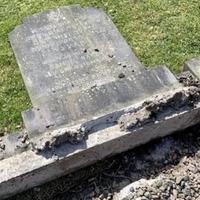 Bishop Noel Treanor speaks of 'shock and disgust' at attacks on Jewish graves in Belfast