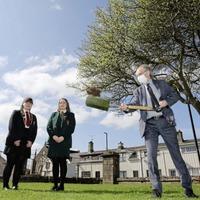Work begins on £11 million Limavady shared education campus