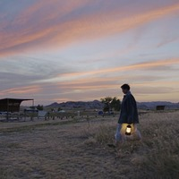Film review: Nomadland an achingly beautiful and poetic paean to solitude