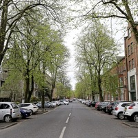 Tree-lined south Belfast street named `most Instagrammable' in Northern Ireland