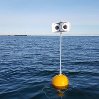Googly-eyed scarecrow could prevent seabirds drowning in fishing nets – study