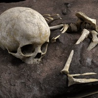 Remains of three-year-old child uncovered in Africa's 'oldest burial site'