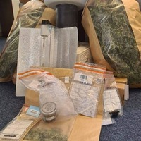 Cannabis factory discovered in Newtownbutler