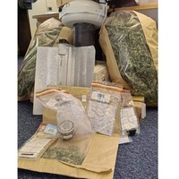 Man (34) in custody after cannabis factory uncovered in Newtownhamilton