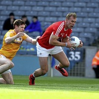 Mickey Harte will bring great profile to Louth: Conor Grimes