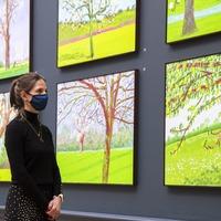 Artist David Hockney used lockdown as inspiration for new paintings