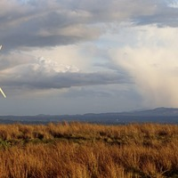 RHI scandal had 'knock-on effect on renewable energy schemes'